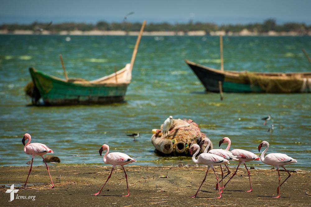 Photographs at Lake Turkana on Friday, Oct. 16, 2015, in Turkana, Kenya. LCMS Communications/Erik M. Lunsford