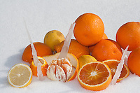 Oranges and lemons on snow with small stalactites, a very particular composition for a feeling of fresheness