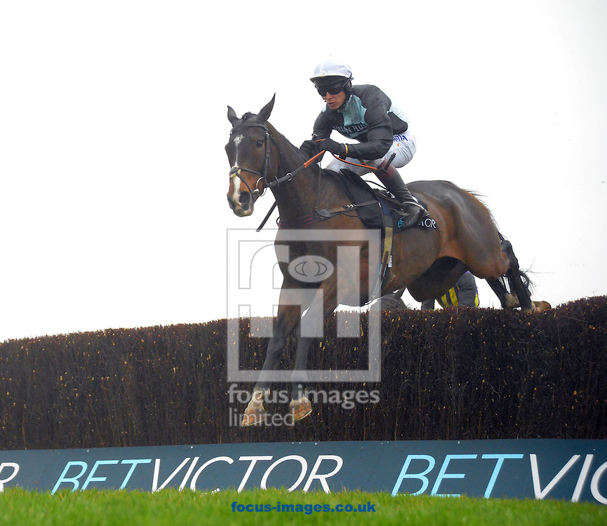 A preview of this weekend's favourites in UK Racing.<br /> Picture by Martin Lynch/Focus Images Ltd 07501333150<br /> 09/12/2016<br /> <br /> Original caption:<br /> VILLAGE VIC at Cheltenham 12-11-16.