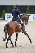 Patrick van der Meer - Uzzo<br /> World Equestrian Festival, CHIO Aachen 2015<br /> © DigiShots