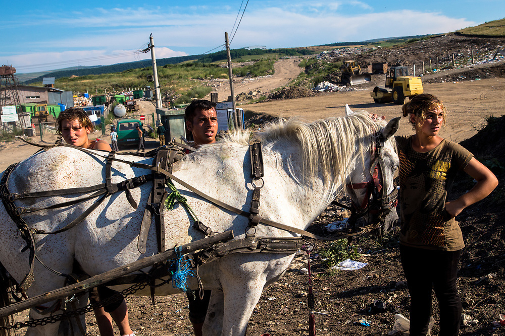 A group of Roma gather salvagable items from the Pata Rat garbage dump into their horse drawn cart.                                                                    © Daniel Barreto Mezzano