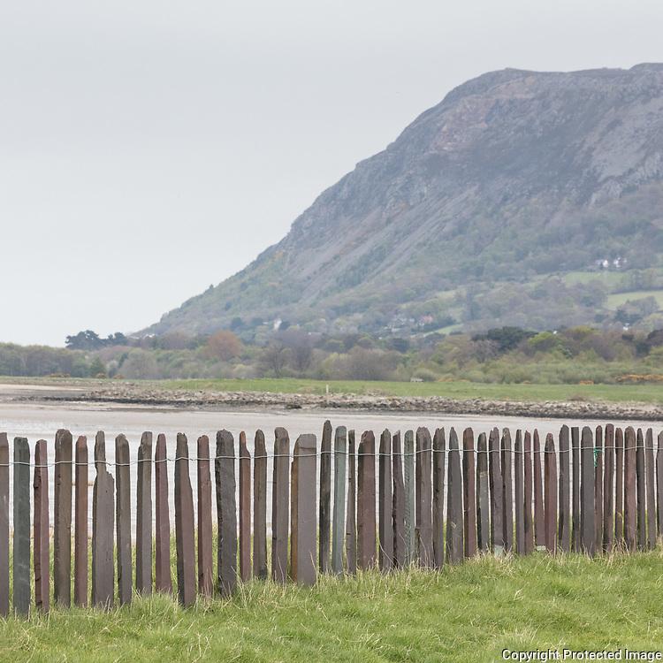 Slate fence, Penmaen Mawr, Gwynedd.
