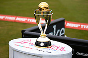 The World Cup trophy during the ICC Women's World Cup match between England and India at the 3aaa County Ground, Derby, United Kingdom on 24 June 2017. Photo by Simon Davies.