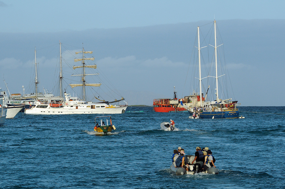 Boats at Puerto Ayora Harbor, Santa Cruz Island, Galapagos Islands, Ecuador