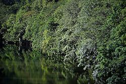 UK ENGLAND CORNWALL 23UN15 - View of the river Tamar at Gunnislake between Devon and Cornwall.<br /> <br /> jre/Photo by Jiri Rezac / WWF UK<br /> <br /> © Jiri Rezac 2015