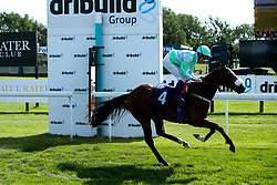 Qinwan ridden by Rob Hornby trained by Andrew Balding in The ITEC EPF Novice Median Auction Stakes (Class 5) - Mandatory by-line: Robbie Stephenson/JMP - 04/09/2019 - PR - Bath Racecourse - Bath, England - Bath Races