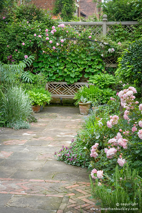 Terrace with wooden bench seat and decorative paving. Rosa 'Felicia' to right and R.'Constance Spry' over bench. High trellis boundary with climbers.