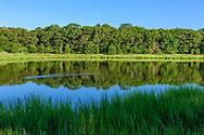 Indian Island County Park, Riverhead, NY
