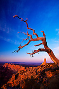 Sunset on the Desert View Watchtower, South Rim, Grand Canyon National Park, Arizona. This image currently hangs at the Desert View Visitor Center, greeting them as they enter the building.