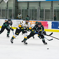 2nd year forward Lilla Carpenter-Boesch (17) of the Regina Cougars in action during the Women's Hockey home game on December 1 at Co-operators arena. Credit: Arthur Ward/Arthur Images