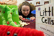 """Cathy Gormally 2nd year Science at the """"undergrad"""" Science Fair in NUIG. Photo:Andrew Downes"""