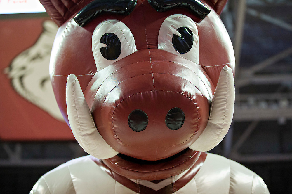 FAYETTEVILLE, AR - NOVEMBER 18:  Mascot Big Red of the Arkansas Razorbacks performs during a game against the Akron Zips at Bud Walton Arena on November 18, 2015 in Fayetteville, Arkansas.  The Zips defeated the Razorbacks 88-80.  (Photo by Wesley Hitt/Getty Images) *** Local Caption ***