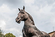 Bronze horse statue based on the design by Leonardo Da Vinci