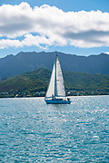 Kaneohe Bay, Ohu, Hawaii