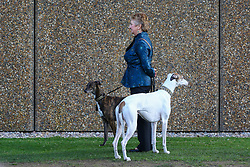 © Licensed to London News Pictures. 09/03/2017. Birmingham, UK. A woman stands to attention with her two dogs after arriving at the 126th annual Crufts dog show at the NEC in Birmingham, West Midlands. The show is organised by the Kennel Club and is the biggest of it's kind in the world.  Photo credit : Ian Hinchliffe/LNP