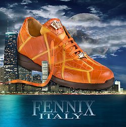 Fennix Shoe over City of Chicago