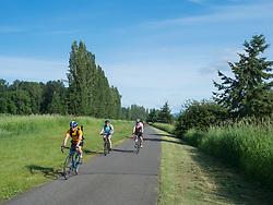 United States, Washington, Redmond, Sammamish Slough Bike Trail