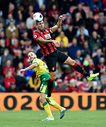 Steve Cook (3) of AFC Bournemouth leaps above Teemu Pukki (22) of Norwich City to head the ball during the Premier League match between Bournemouth and Norwich City at the Vitality Stadium, Bournemouth, England on 19 October 2019.