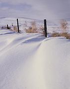 AA00878-04...NORTH DAKOTA - Fence in the Little Missouri National Grasslands.