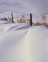 AA00878-04...NORTH DAKOTA - Fence in the Little Missouri National Grasslands.