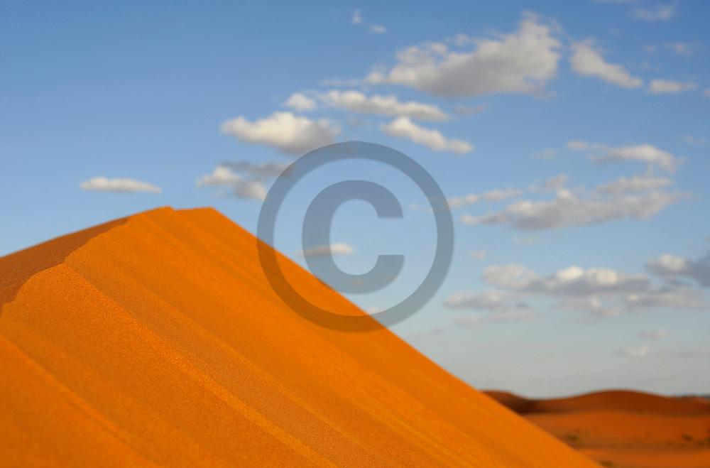 24/09/09 - MERZOUGA - PROVINCE D ERRACHIDIA - MAROC - L Erg CHEBBI et les dunes de Merzouga au Sud Est Marocain - Photo Jerome CHABANNE