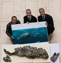 The fossilised skeleton of a Jurassic sea creature from the Ichthyosaurs family found on Skye in 1966 has been unveiled at the National Museum of Scotland by scientists for the first time. Named the Storr Lochs Monster, it is the most complete skeleton of a sea-living reptile from the dinosaur age ever to be found in Scotland and has been extracted from the rock that encased it for millions of years.<br /> <br /> A partnership between the University of Edinburgh, National Museums of Scotland and every company SSE has enabled the fossil to be extracted from the rock that encased it for millions of years.<br /> <br /> Pictured: Dr Steven Brusatte (University of Edinburgh), Allan Gillies (son of Norris Gillies who found the fossil in 1966), Dr Nick Fraser (National Museums of Scotland) with an artists impression of the Storr Lochs Monster