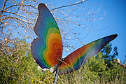Rainbow Butterfly Art At Oso Creek Trail Mission Viejo