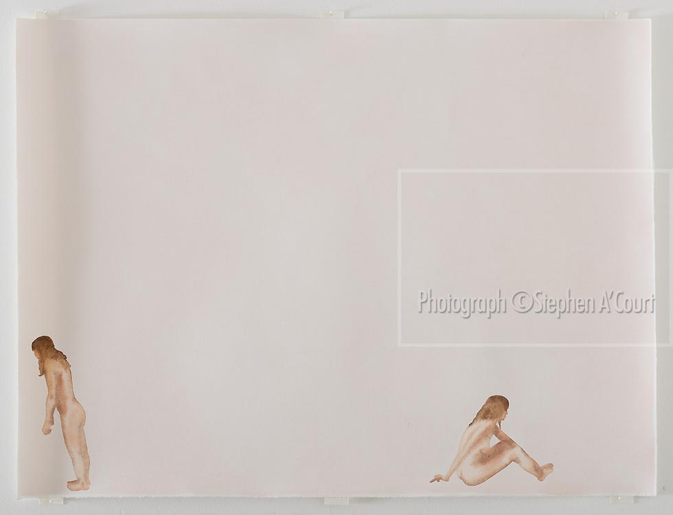 Four Young Artists exhibition, June 2017. Bowen Galleries, Wellington, NZ.