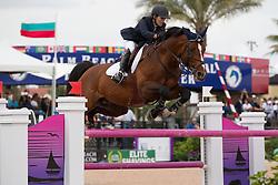 Engle Margie (USA) - Royce<br /> Horseware GP CSI 2*<br /> Wellington 2012<br /> © Hippo Foto - Cealy Tetly