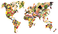 Studio Still life of World map made from Fruit and Vegetables was made for an international food packaging trade show stand. This was printed at 3m wide and took about three days to complete.<br />