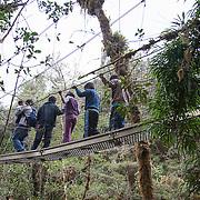 Children cross over a cloud forest canopy walkway during an environmental education program