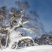 Nick Larson, Rusutsu Japan