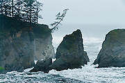 Pacific Ocean waves crash on sea cliffs at Sunset Bay State Park, Coos County, Oregon, USA.