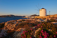 Grece, les Cyclades, Iles Egéennes,  Ile de Paros, Parikia (Hora), moulin près du port // Greece, Cyclades Islands, Paros Island, Parikia (Hora), windmill near the harbour