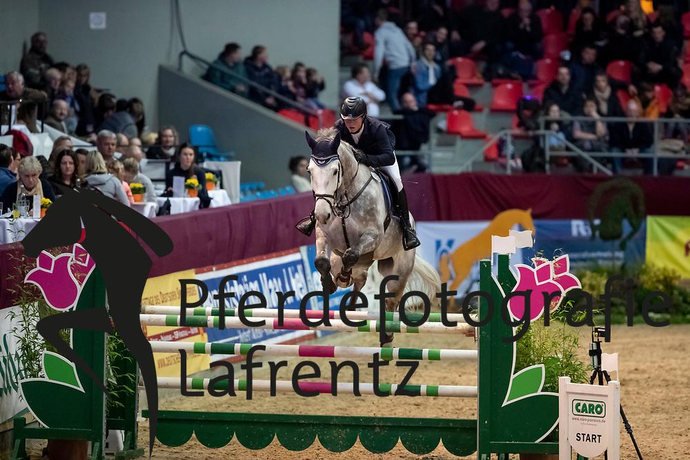 DELFS Henry (GER), Cunningham D<br /> Neustadt-Dosse - CSI 2019<br /> 2. Qualifikation Youngster Tour für 7 und 8 jährige Pferde<br /> 11. Januar 2019<br /> © www.sportfotos-lafrentz.de/Stefan Lafrentz