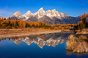 The Grand Tetons are reflected in the still waters of the Snake River shortly after an autumn sunrise in Grand Teton National Park, Wyoming. The tallest mountain in this image — and in Grand Teton National Park — is Grand Teton, which is 13,770 feet (4,197 meters) tall. This image was captured at Schwabacher Landing where a beaver dam has slowed the Snake River.