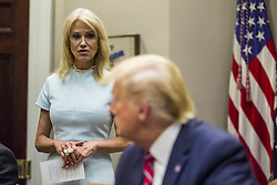 White House Counselor Kellyanne Conway speaks during an opioid round table at the White House in Washington, DC, USA, 12 June 2019. Photo by Zach Gibson/Pool/ABACAPRESS.COM