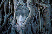 Thailande - <br /> Phra Nakhon Si Ayutthaya Province - Ayutthaya Wat Mahathat