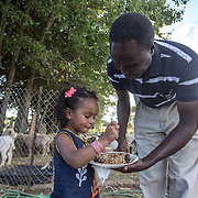 "DUMFRIES, VA - SEP12: Jude Elsanousi, 4, eats freshly grilled goat with her father Mohamed at the Shah Farm in Dumfries, VA, September 12, 2016. The animals  will be slaughtered in honor of Eid al-Adha, the ""Feast of the Sacrifice"". (Photo by Evelyn Hockstein/For The Washington Post)"