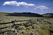 Sagebrush and rail fence, near Jackson Hole Wyoming
