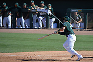 MESA, AZ - MARCH 09:  Tyler Ladendorf #25 of the Oakland Athletics hits an RBI single in the fourth inning of the spring training game against the Cincinnati Reds at HoHoKam Stadium on March 9, 2017 in Mesa, Arizona.  (Photo by Jennifer Stewart/Getty Images)