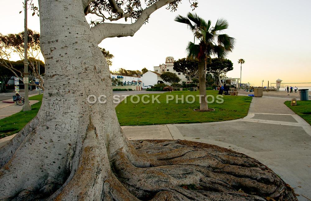 Downtown Laguna Beach at Main Beach Park