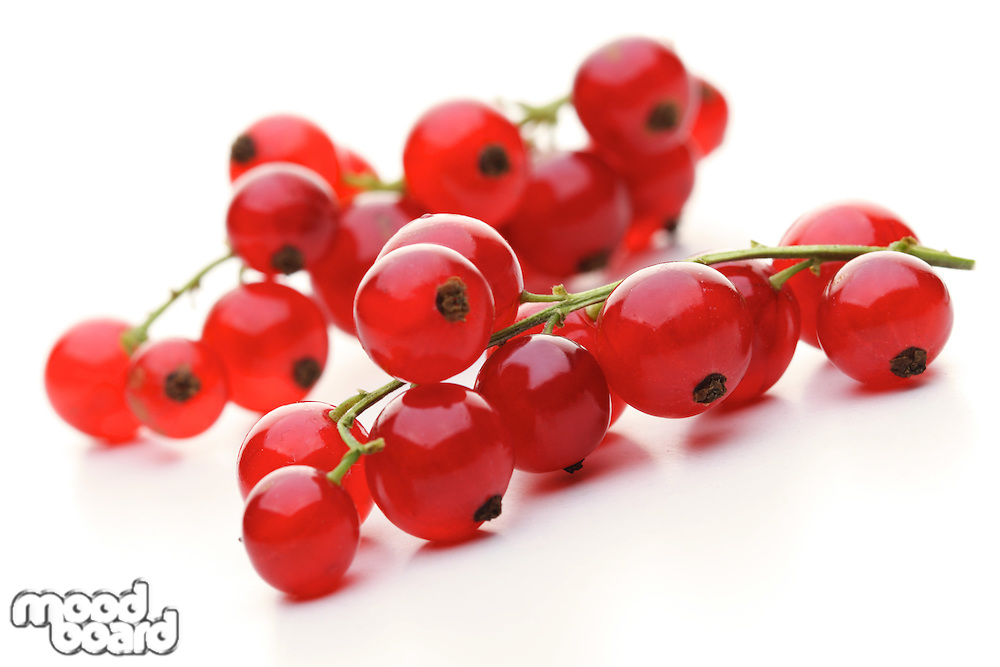 Close - up of red currants