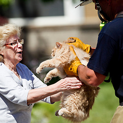 """Meridian Fire Department Captain Luke Smiley (right) delivers a cat (named """"Little Girl"""") rescued from a three alarm house fire to homeowner Jolene Madison (left). Dispatchers received a call about the fire at 2:19 p.m., said Paul Roberts, a division chief for the Boise Fire Department. Boise firefighters were joined by crews from Meridian, Eagle and the Whitney Fire District. About 30 firefighters, along with Boise Police, responded to the scene. The three-alarm fire was brought under control within a half-hour. No one was injured, although one resident was treated for smoke inhalation, Roberts said. Wednesday June 1, 2016"""