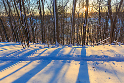 The sun shines through the forest above Indian Hill Reservoir in West Newbury, Massachusetts.