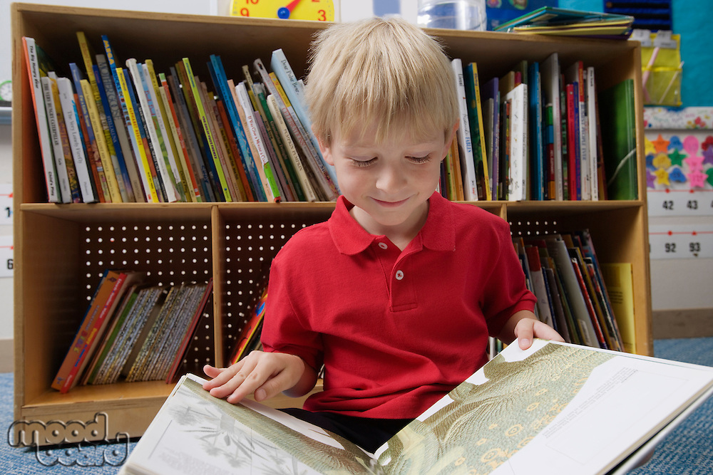 Little Boy Reading a Picture Book