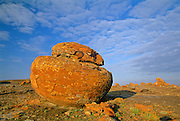 Sandstone concretion<br /> Red Rock Coulee Natutal Preserve<br /> Alberta<br /> Canada