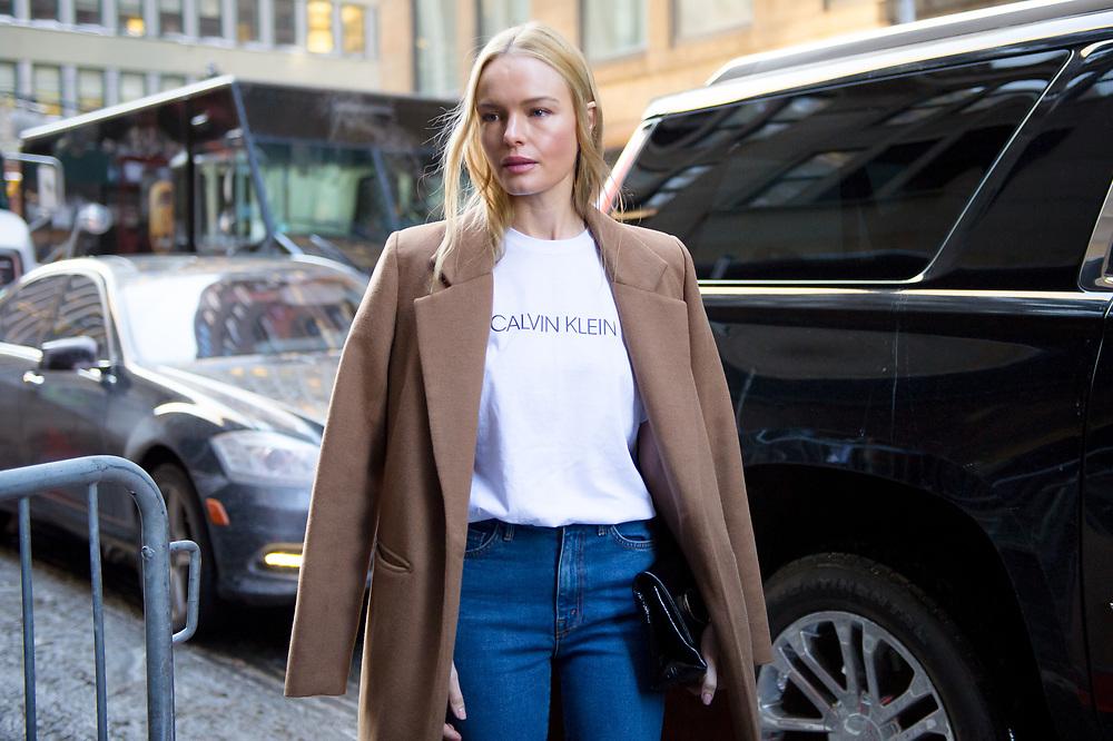Kate Bosworth at Calvin Klein FW2017