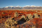 Images of the Mono Basin on the eastern slope of the Sierra Nevada.