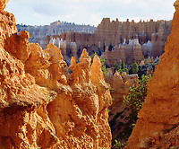 I hiked down into Bryce Canyon to get a photo of the glowing sandstone formations called hoodoos.  These weird rock spires make for a bizarre landscape.